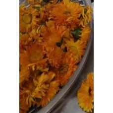 Měsíček lékařský květ CZ-BIO-002 sušený, 100g